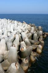 coastal protection