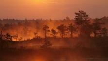 Landscape of Kakerdaja Bog, sunrise