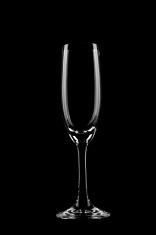 Champagne Glass