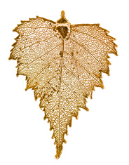 Birch leaf in gold