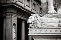 stone leo
