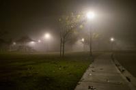 Foggy Night at a Park