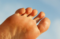 Toes detail