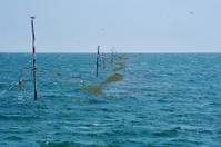 Black Sea and fishing-net
