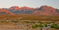 sonoran desert sunrise