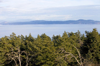 View from Mount Doug Park