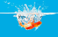goldfish water splash