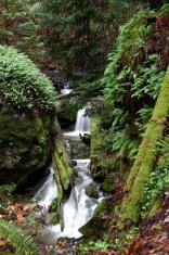 Tanbark Falls