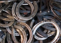 Pile of Horse Shoes