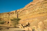The Ramon Crater, Israel desert