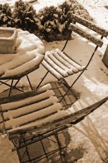stillife in sepia snow