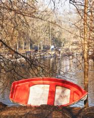 Old Boat. Color Image