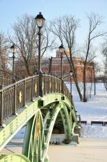 bridge across the frozen pond
