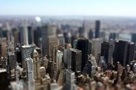 new york miniature
