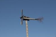 Wind Rattle