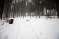 Polish mountains during winter
