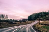 Road In Sweden During Twilight.