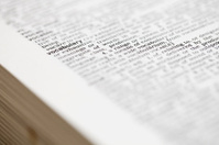 Dictionary: Vocabulary defined