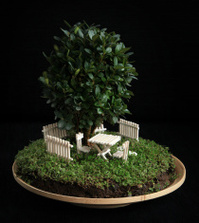 Miniature garden in a flower pot