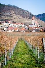Village in Danube Valley