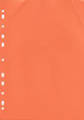 Orange Ring Binder Divider