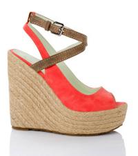 shoe isolated