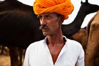 camel herder, Pushkar, India