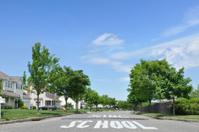 Suburban Neighborhood School Crossing Speed Bump