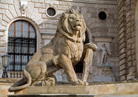 Vienna - lion statue from National library