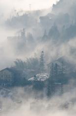 Fog Swept Houses