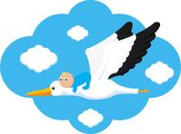 Flying Stork Delivers Baby Boy
