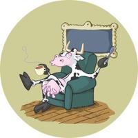 British cow having a tea.