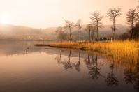 Early morning by the Loch