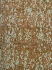 Pattern Wood Tree