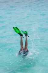 Diving into the Sea