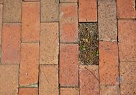 Missing a Brick