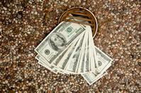 Waste money - concept