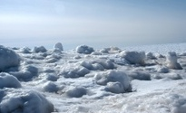 Winter frozen 1