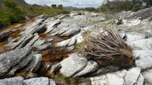 Rocks and mountain creek in Brazil