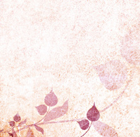 Romantic floral vintage