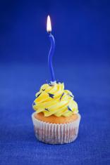Blue Birthday Cupcake Stock Photos FreeImagescom