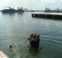 Child swimming in harbor, Havana