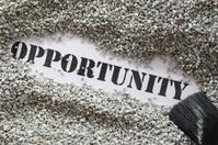 Opportunity -- Treasure Word Series