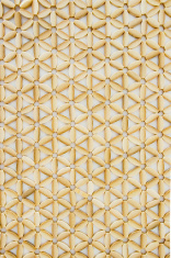 Shell slices in star pattern