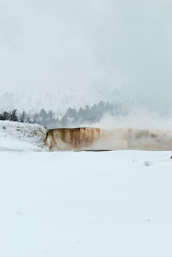 Mammoth Hot Springs, Winter, Yellowstone NP