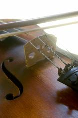Instruments - Violin 03