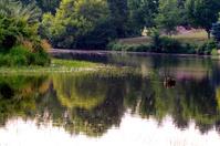 farm pond 2