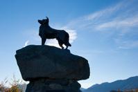 dog statue against blue sky at lake tekapo