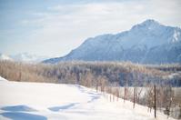 Pioneer Peak in winter
