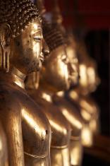Buddha's gold statue